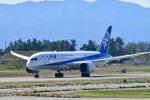 @あきやんさんが、小松空港で撮影した全日空 787-8 Dreamlinerの航空フォト(写真)