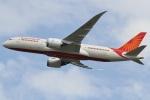 camelliaさんが、成田国際空港で撮影したエア・インディア 787-8 Dreamlinerの航空フォト(写真)
