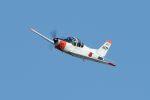 うめやしきさんが、厚木飛行場で撮影した海上自衛隊 T-5の航空フォト(写真)