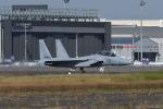 夏みかんさんが、名古屋飛行場で撮影した航空自衛隊 F-15DJ Eagleの航空フォト(写真)