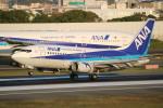 水月さんが、伊丹空港で撮影したANAウイングス 737-54Kの航空フォト(写真)