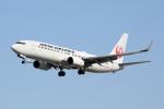 徳兵衛さんが、伊丹空港で撮影した日本航空 737-846の航空フォト(写真)