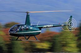 Assk5338さんが、松本空港で撮影したアルファーアビエィション R44 Clipperの航空フォト(飛行機 写真・画像)