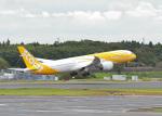 鈴鹿@風さんが、成田国際空港で撮影したスクート 787-9の航空フォト(写真)