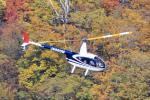 norimotoさんが、宇都宮飛行場で撮影した日本法人所有 R44 Ravenの航空フォト(写真)