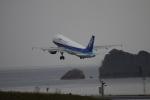 kazutoさんが、鳥取空港で撮影した全日空 A320-211の航空フォト(写真)