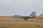 とろーるさんが、千歳基地で撮影した航空自衛隊 F-15J Eagleの航空フォト(写真)