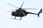 つっさんさんが、八尾空港で撮影した陸上自衛隊 OH-6Dの航空フォト(写真)