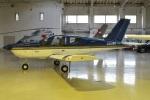 MOR1(新アカウント)さんが、調布飛行場で撮影した日本エアロテック TB-9 Tampicoの航空フォト(写真)