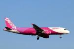 funi9280さんが、新千歳空港で撮影したピーチ A320-214の航空フォト(飛行機 写真・画像)