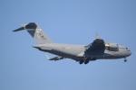 DONKEYさんが、新田原基地で撮影したアメリカ空軍 C-17A Globemaster IIIの航空フォト(写真)