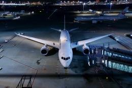 M.airphotoさんが、羽田空港で撮影した日本航空 787-8 Dreamlinerの航空フォト(飛行機 写真・画像)