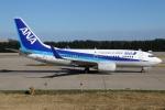たみぃさんが、北京首都国際空港で撮影した全日空 737-781の航空フォト(写真)