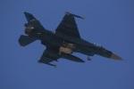 DONKEYさんが、新田原基地で撮影した航空自衛隊 F-2Aの航空フォト(写真)
