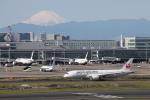 VEZEL 1500Xさんが、羽田空港で撮影した日本航空 787-8 Dreamlinerの航空フォト(写真)