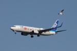 VEZEL 1500Xさんが、羽田空港で撮影した全日空 737-881の航空フォト(写真)