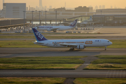 チャッピー・シミズさんが、羽田空港で撮影した全日空 767-381/ERの航空フォト(写真)