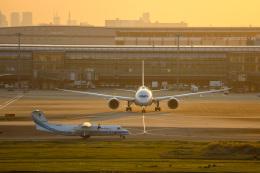 チャッピー・シミズさんが、羽田空港で撮影した海上保安庁 DHC-8-315 Dash 8の航空フォト(写真)