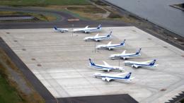 誘喜さんが、羽田空港で撮影したエアーニッポン 737-5L9の航空フォト(写真)