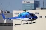 Mizuki24さんが、東京ヘリポートで撮影したエクセル航空 AS355N Ecureuil 2の航空フォト(写真)
