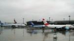 westtowerさんが、成田国際空港で撮影したオーストリア航空 777-2Z9/ERの航空フォト(写真)