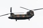 ファントム無礼さんが、朝霞駐屯地で撮影した陸上自衛隊 CH-47JAの航空フォト(写真)