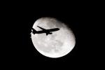AkiChup0nさんが、羽田空港で撮影した日本航空 767-346/ERの航空フォト(写真)