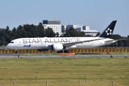 さくらの城南山。さんが、成田国際空港で撮影した全日空 787-9の航空フォト(写真)