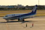 HNANA787さんが、松山空港で撮影したANAウイングス 737-5L9の航空フォト(写真)