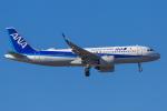 mameshibaさんが、成田国際空港で撮影した全日空 A320-271Nの航空フォト(写真)