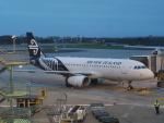 tmkさんが、シドニー国際空港で撮影したニュージーランド航空 A320-232の航空フォト(写真)