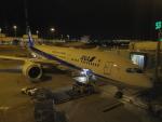 tmkさんが、シドニー国際空港で撮影した全日空 787-9の航空フォト(写真)