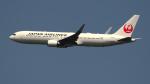 kenko.sさんが、成田国際空港で撮影した日本航空 767-346/ERの航空フォト(写真)
