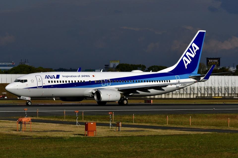 冷やし中華始めましたさんの全日空 Boeing 737-800 (JA56AN) 航空フォト