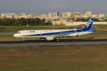 Gpapaさんが、伊丹空港で撮影した全日空 A321-211の航空フォト(写真)