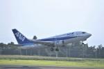 kumagorouさんが、鹿児島空港で撮影したANAウイングス 737-54Kの航空フォト(写真)