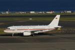 N-OITAさんが、羽田空港で撮影したドイツ空軍 A319-133X CJの航空フォト(飛行機 写真・画像)