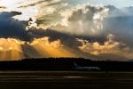 Cygnus00さんが、新千歳空港で撮影した全日空 737-881の航空フォト(写真)