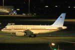 ふるちゃんさんが、羽田空港で撮影したドイツ空軍 A319-133X CJの航空フォト(飛行機 写真・画像)