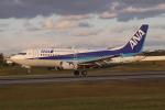 endress voyageさんが、伊丹空港で撮影したANAウイングス 737-5L9の航空フォト(写真)