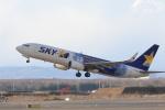 syunさんが、新千歳空港で撮影したスカイマーク 737-81Dの航空フォト(写真)