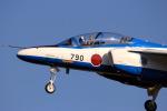 さかなやさんが、入間飛行場で撮影した航空自衛隊 T-4の航空フォト(写真)