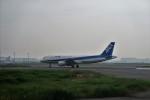 double_licenseさんが、羽田空港で撮影した全日空 A320-211の航空フォト(写真)