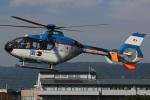 MOR1(新アカウント)さんが、八尾空港で撮影した産経新聞社 EC135T1の航空フォト(写真)