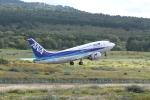 空旅さんが、利尻空港で撮影したANAウイングス 737-54Kの航空フォト(写真)