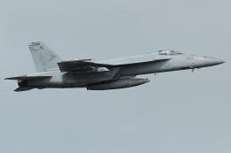 Tomo-Papaさんが、オシアナ海軍航空基地アポロソーセックフィールドで撮影したアメリカ海軍 F/A-18E Super Hornetの航空フォト(飛行機 写真・画像)