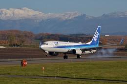 はれ747さんが、旭川空港で撮影した全日空 737-881の航空フォト(飛行機 写真・画像)