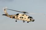 take_2014さんが、入間飛行場で撮影した海上自衛隊 SH-60Kの航空フォト(写真)
