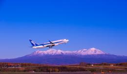 yumeさんが、旭川空港で撮影した全日空 737-881の航空フォト(飛行機 写真・画像)