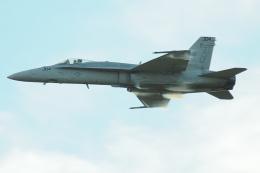 Tomo-Papaさんが、オシアナ海軍航空基地アポロソーセックフィールドで撮影したアメリカ海軍 F/A-18C Hornetの航空フォト(飛行機 写真・画像)